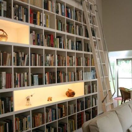 Home library with collection displays