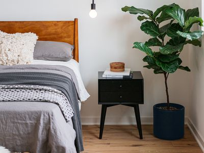 Midcentury bedroom with wooden headboard and black nightstand next to fiddle leaf houseplant