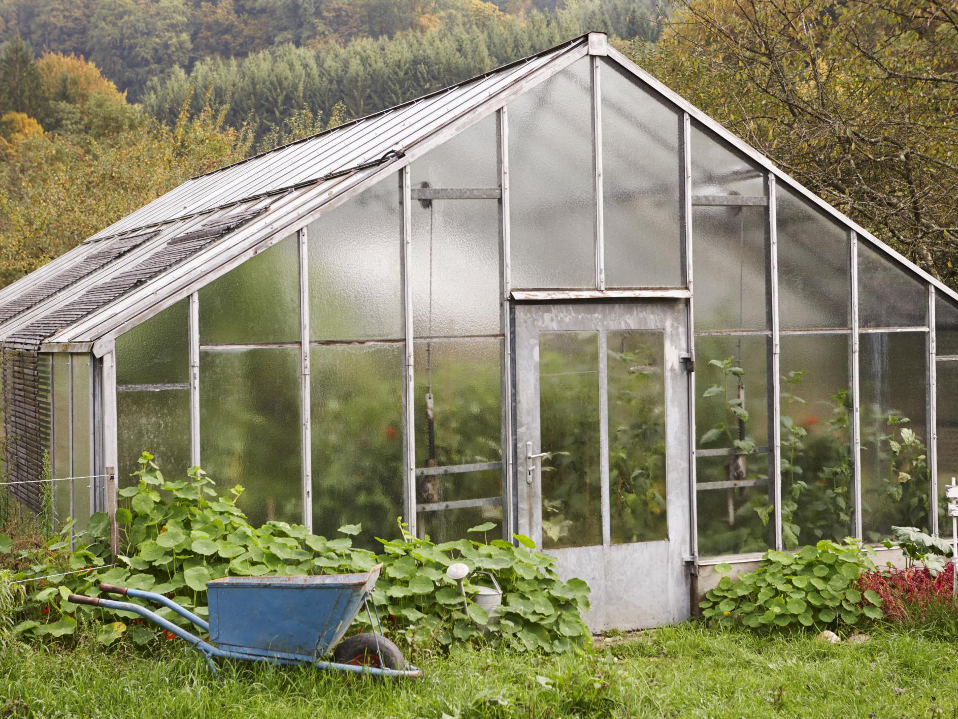 Greenhouse Siding And Glazing Advice And Instructions