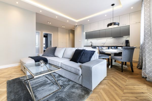 Modern apartment with grey microfiber couch