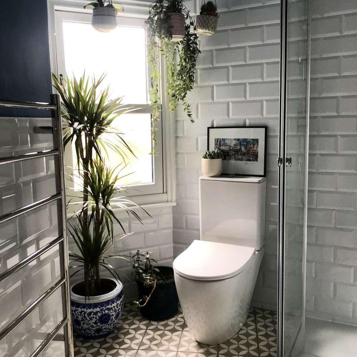 Bathroom with hanging plants