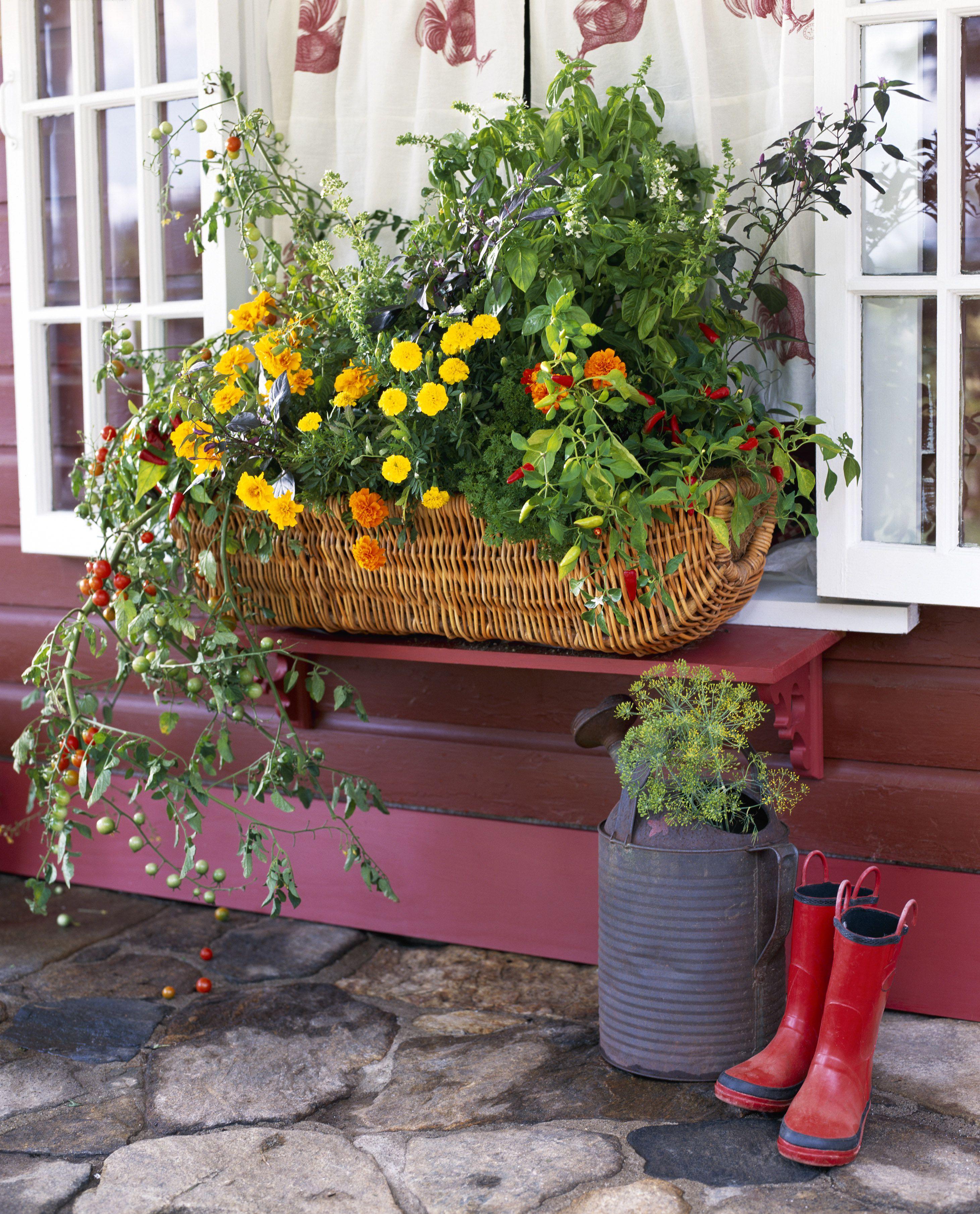 Flowering Vegetable Window Box