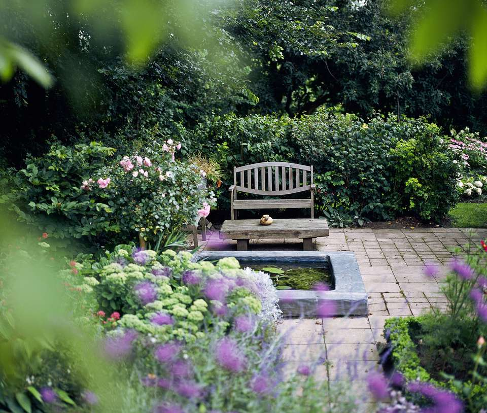 Garden with pond and wooden garden furniture