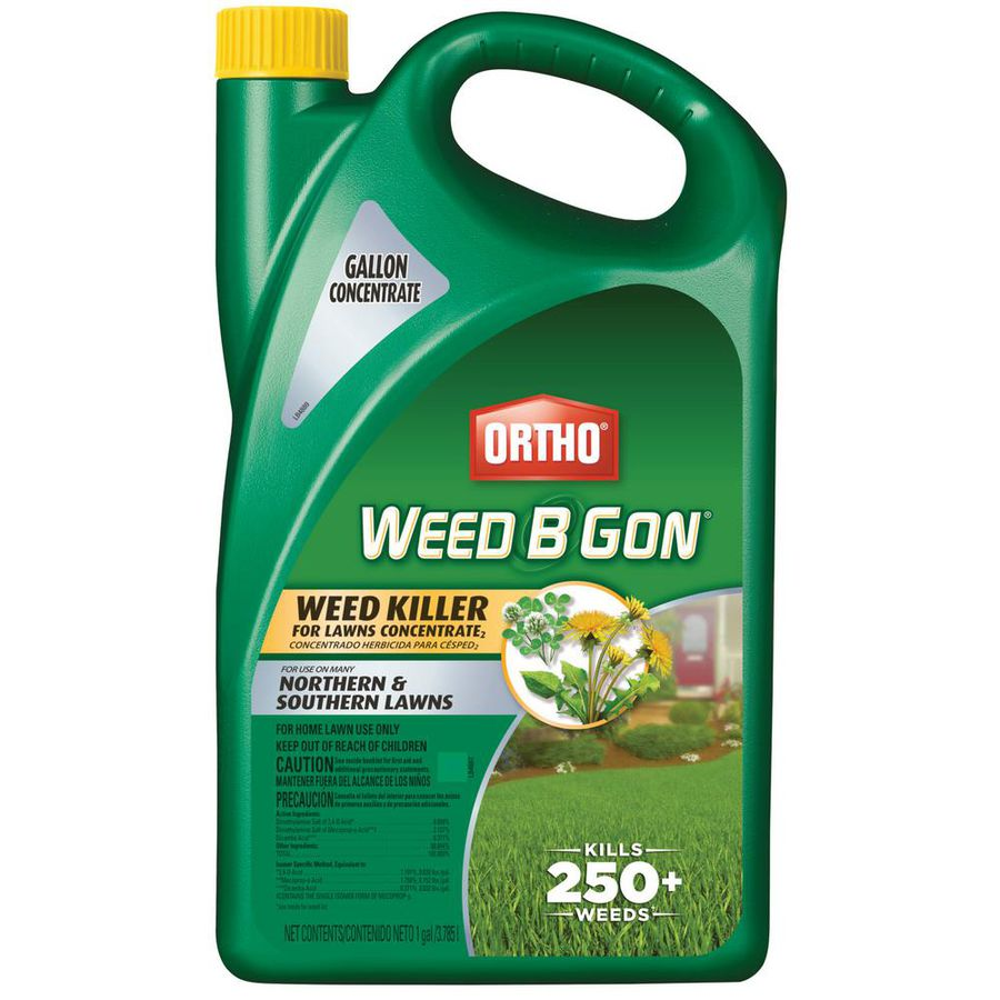 The 8 Best Weed Killers Of 2020