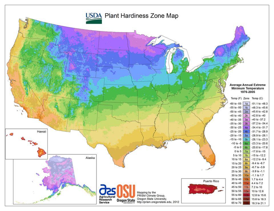 U.S. Plant Hardiness Zone Map