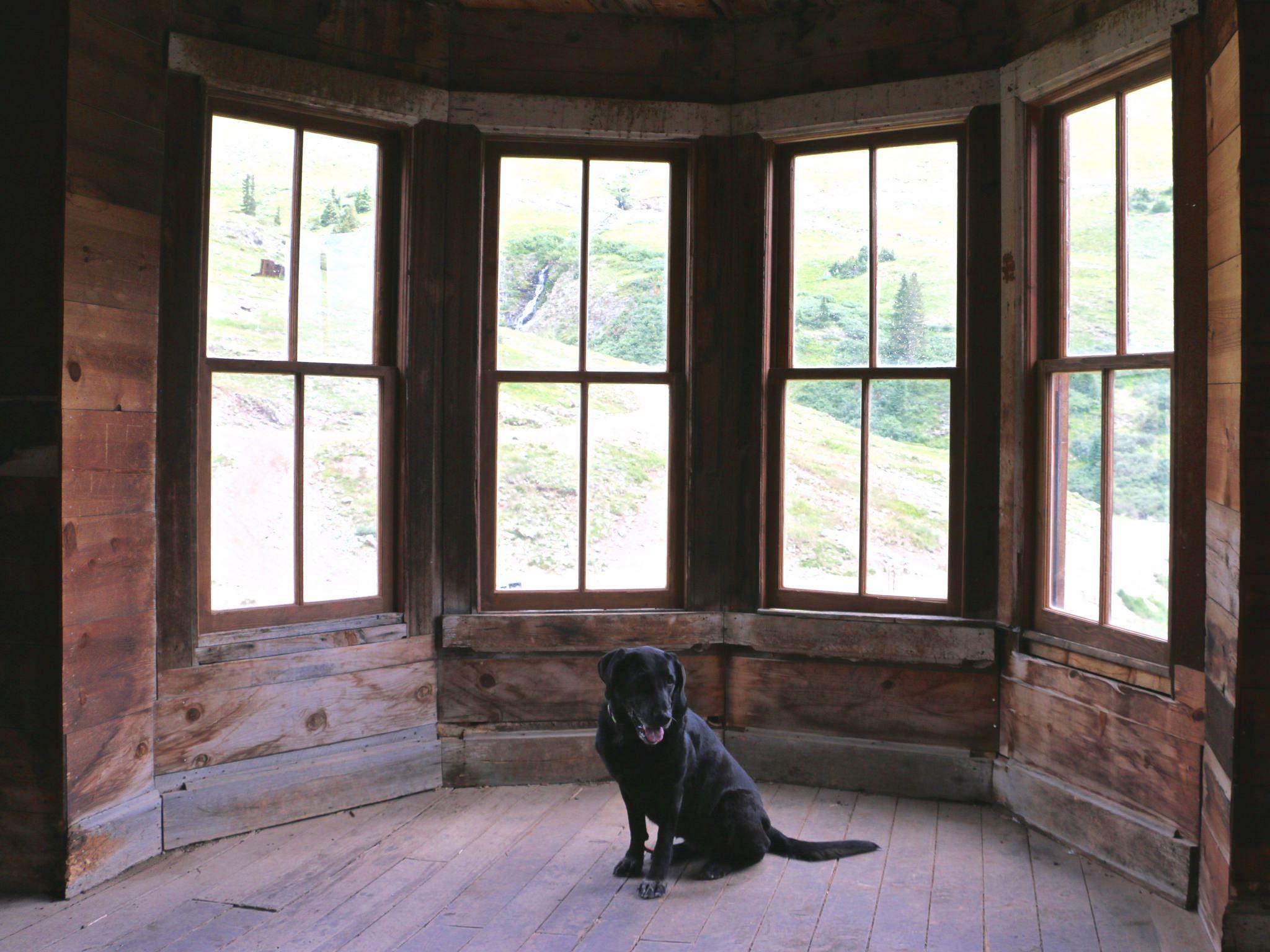 Major Manufacturers Of Wood Windows