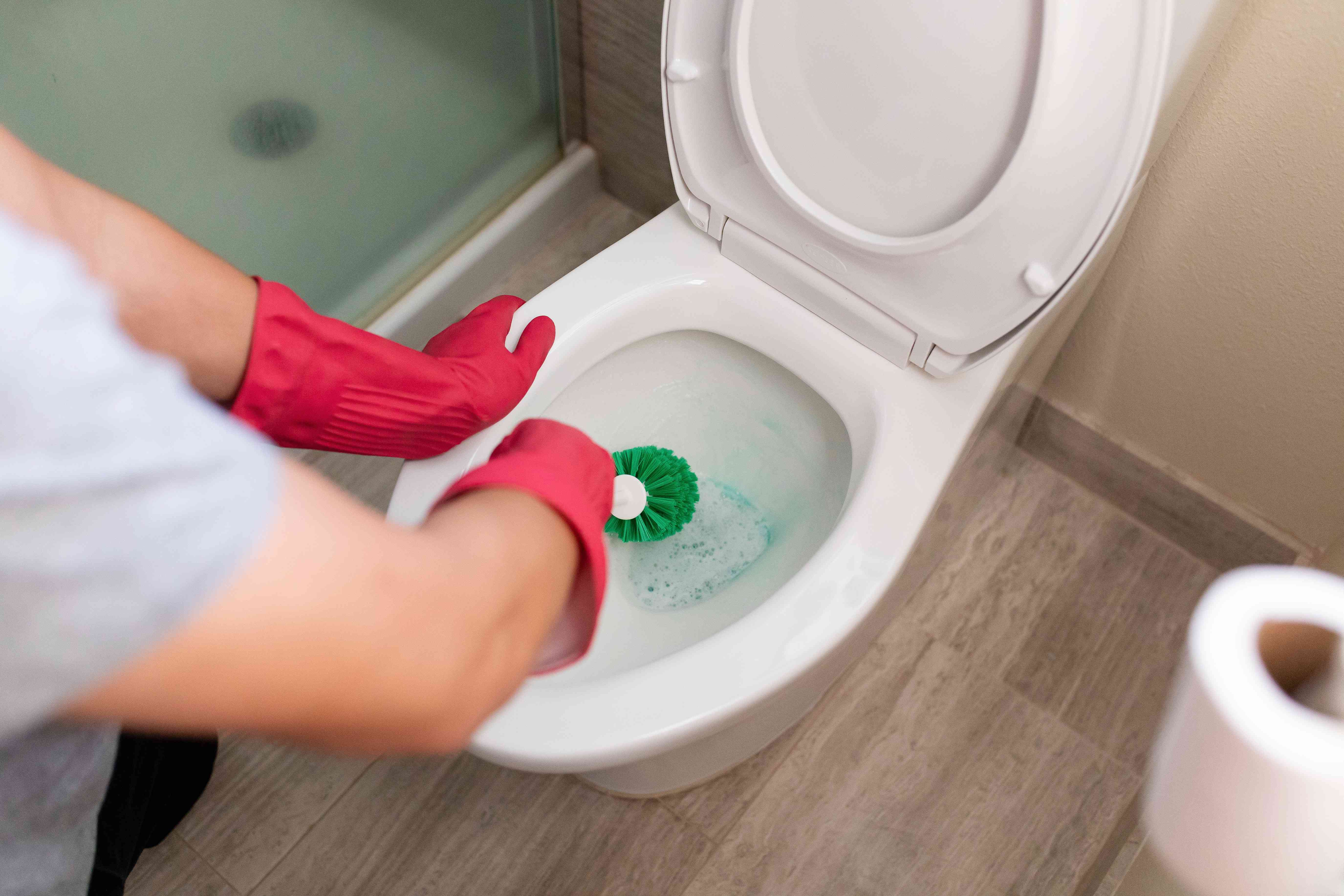 use a toilet brush to clean the inside of the toilet bowl