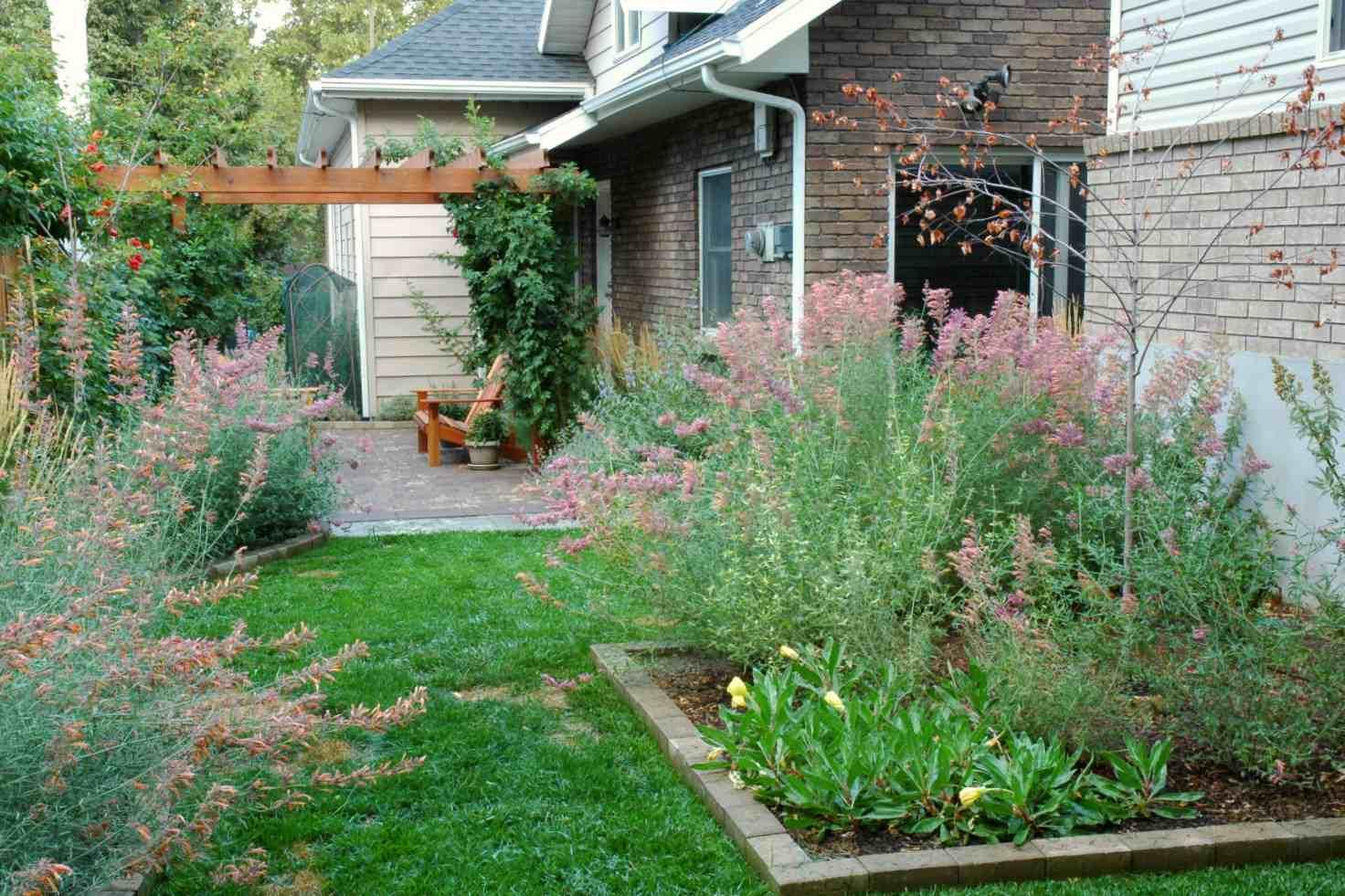 hermoso patio trasero en flor