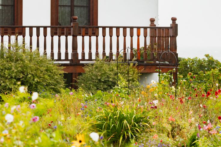 Designing A Cottage Garden, How To Plan A Cottage Garden From Scratch