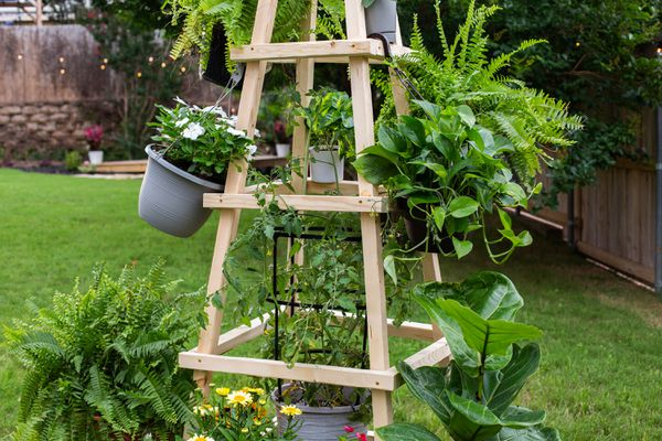 Tall outdoor wooden trellis with planted pots hanging and surrounding fixture
