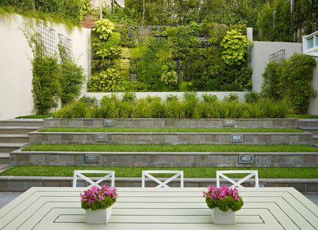 Creative Ideas for a Vertical Garden