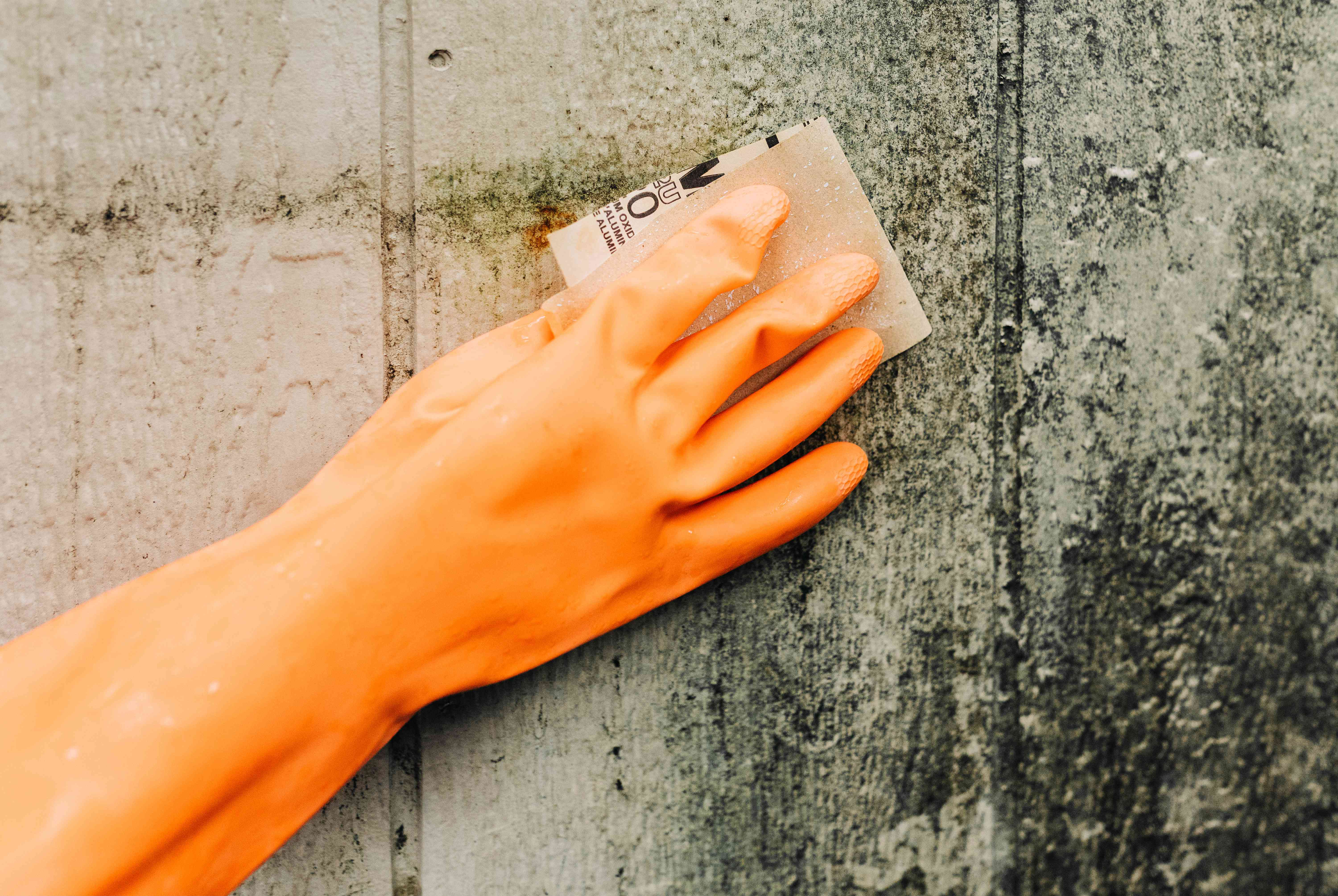 Moldy wood being sanded down with sandpaper and orange gloves