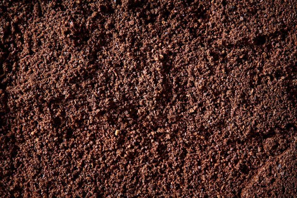 closeup of blood meal texture