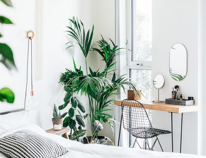 A modern, stylish and bright bedroom with plants