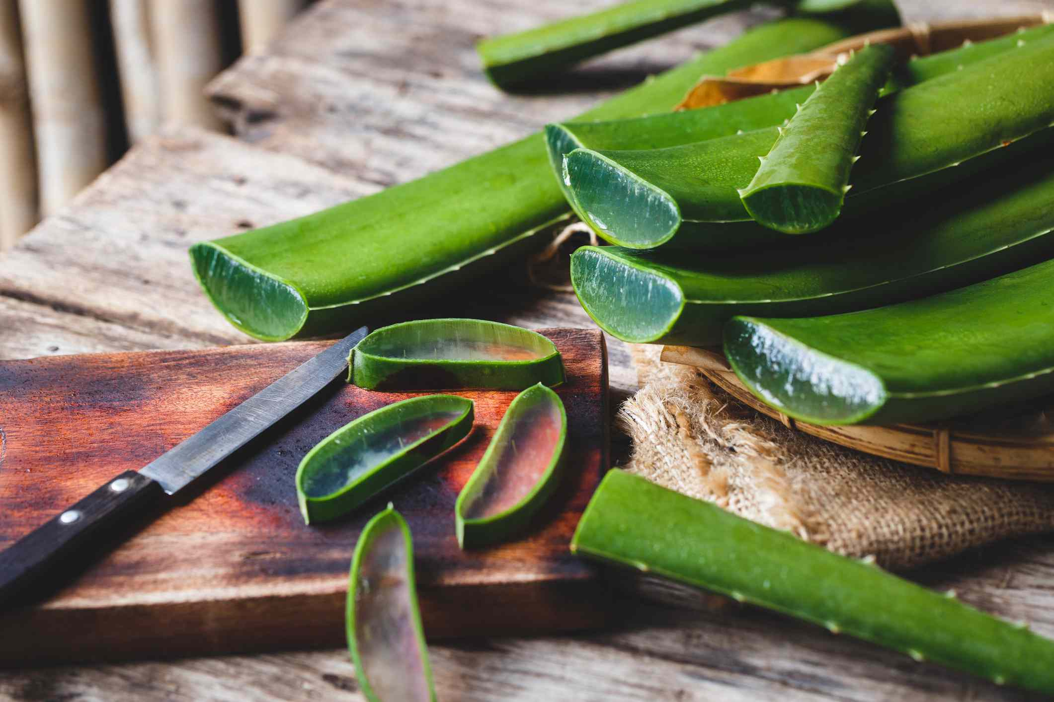 aloe vera being cut open for medicinal use