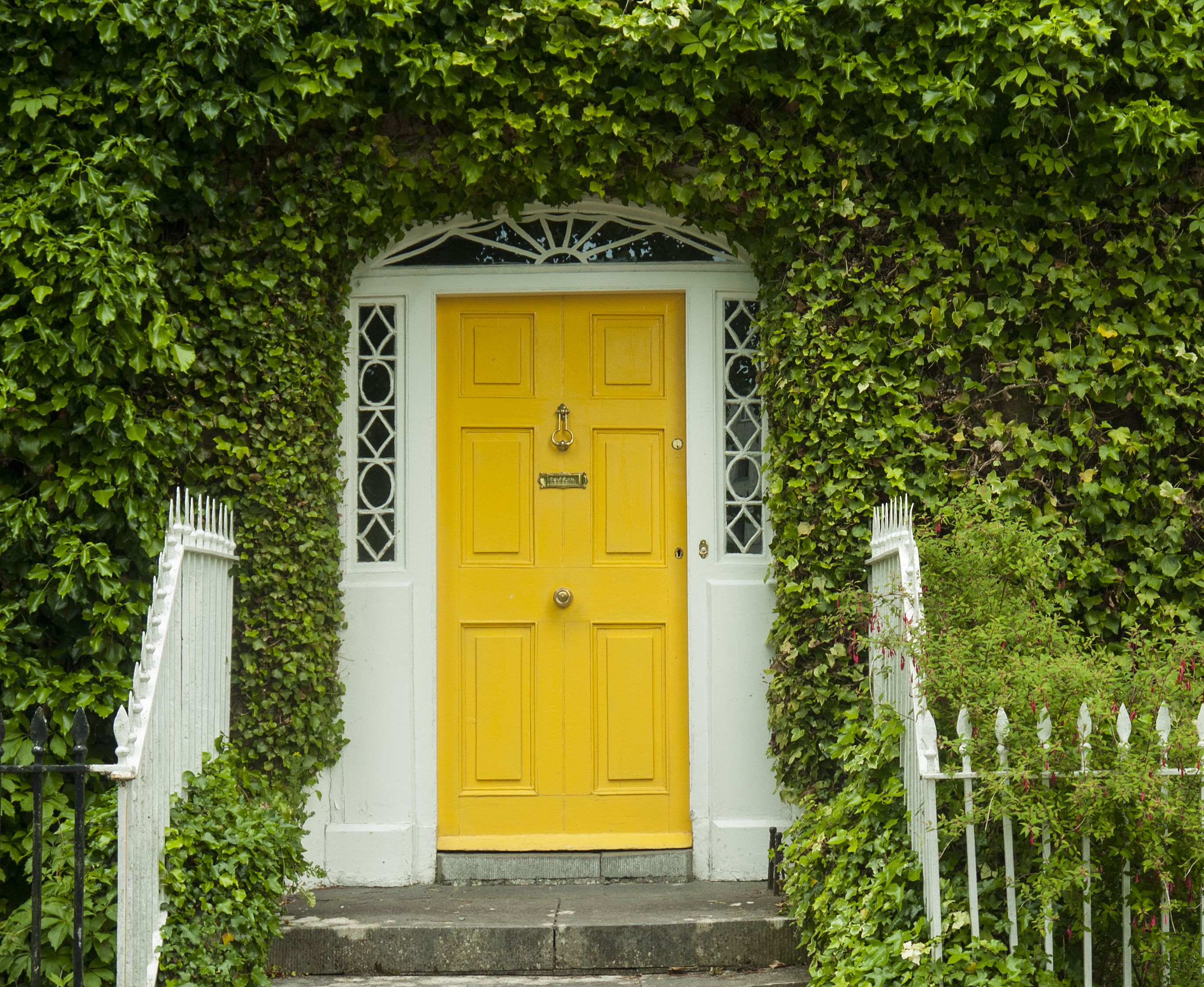 Yellow front door with ivy surrounding it
