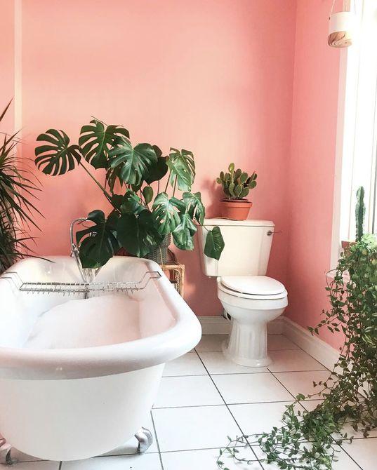 Baño rosa con plantas