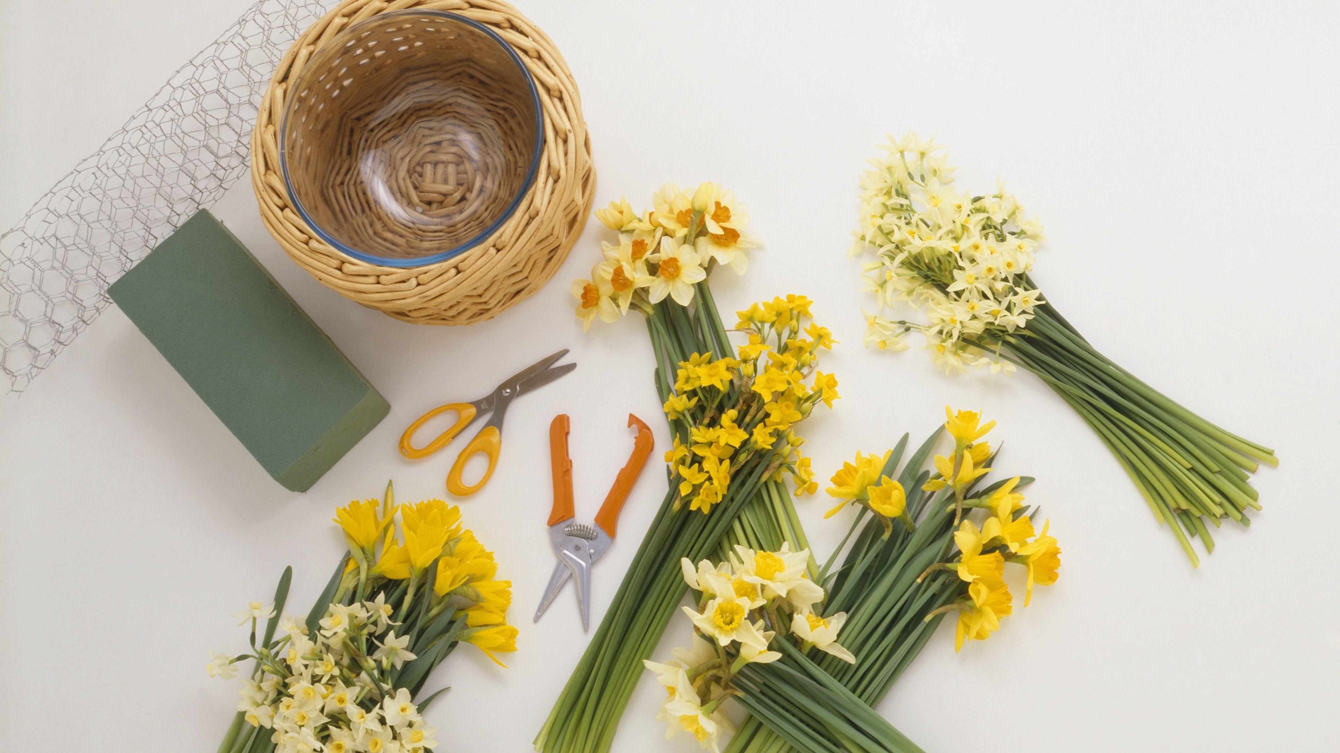 Basic Flower Arranging Supplies
