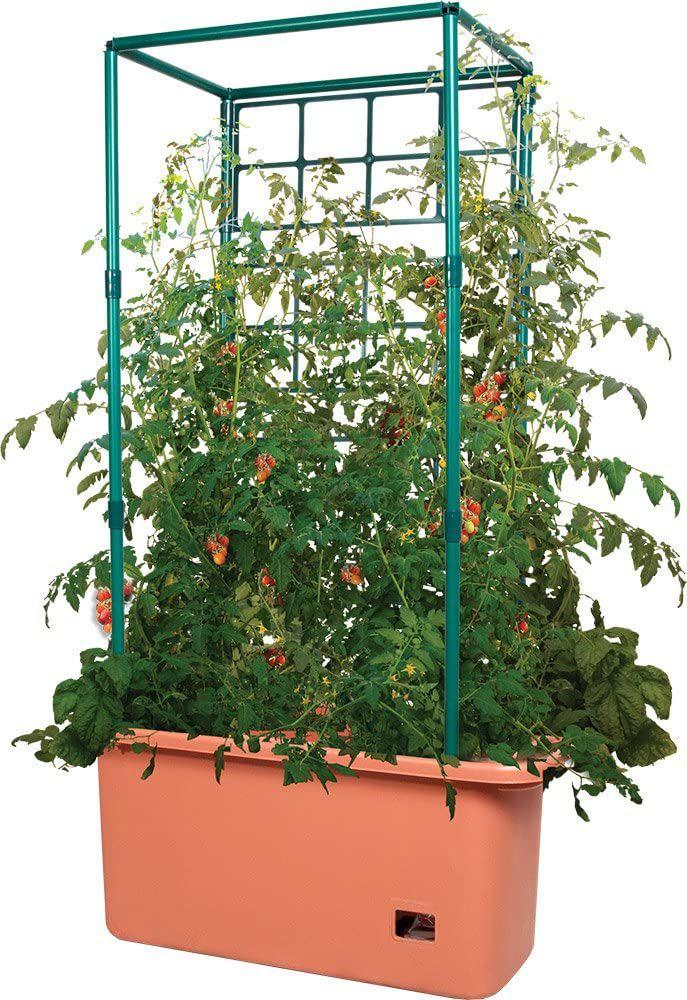 Hydrofarm GCTR Tomato Trellis Garden on Wheels Tree Tower