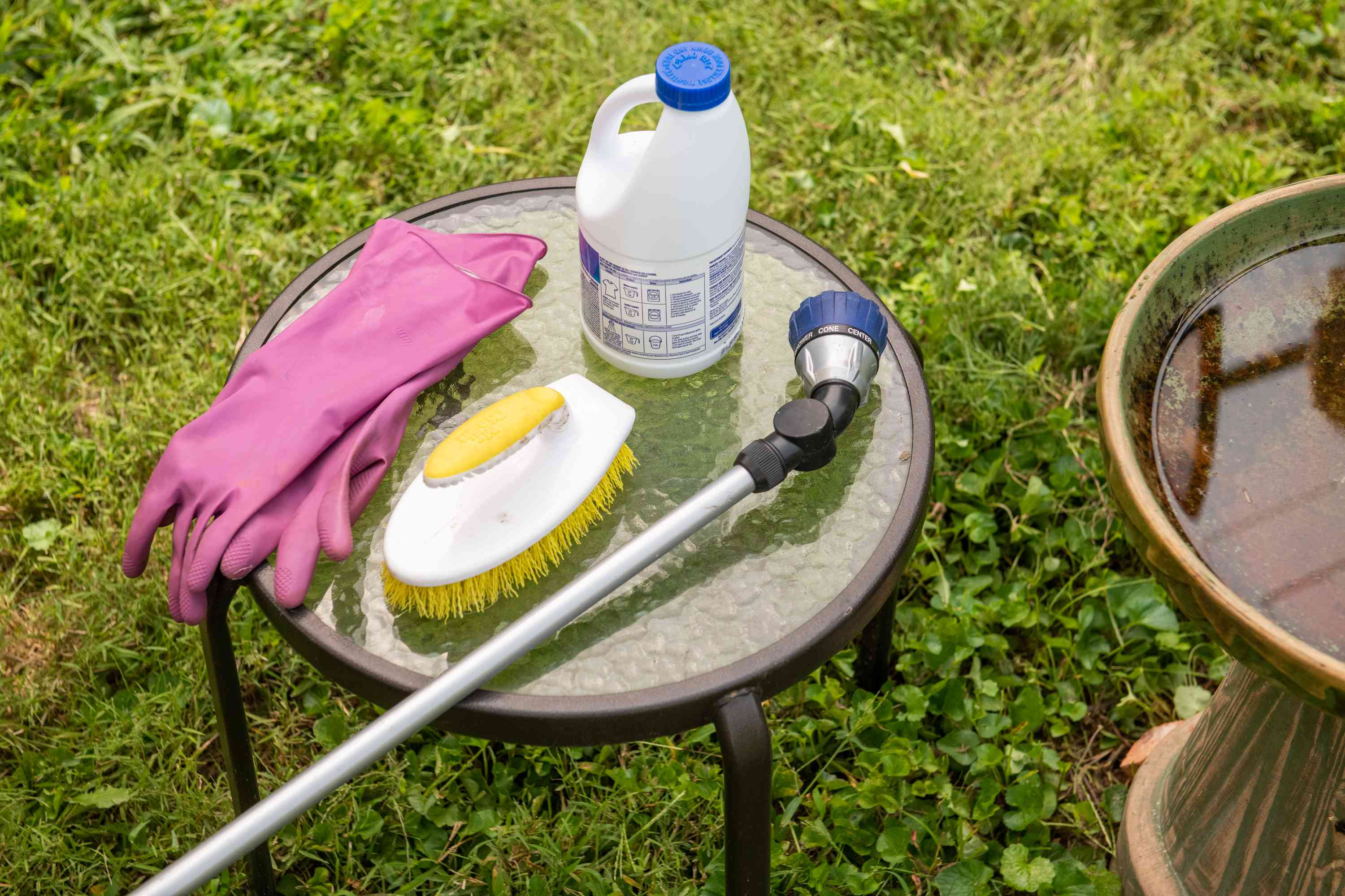 materials for cleaning a dirty bird bath