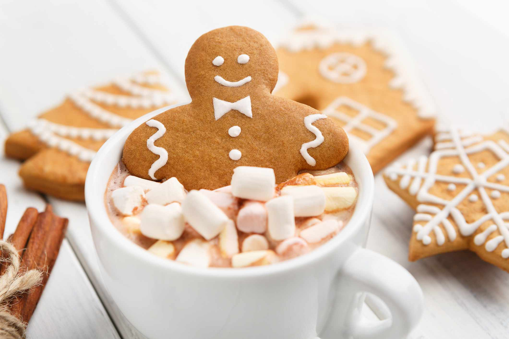 Cup of traditional hot chocolate with marshmallows and gingerbread
