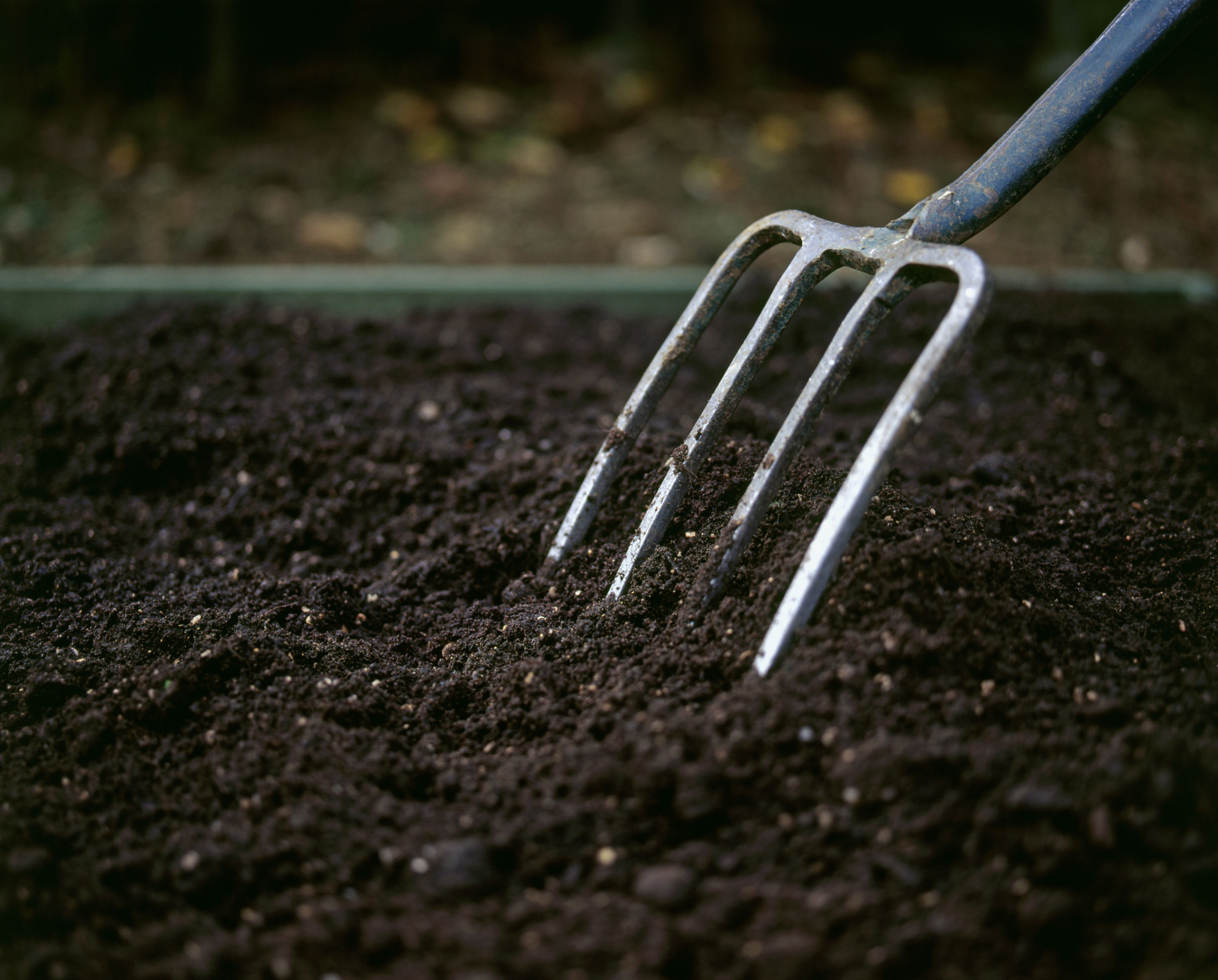 Using a garden fork to spread compost just below the edging of a herb garden, close-up