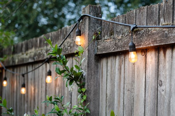 Summertime backyard fence with lights