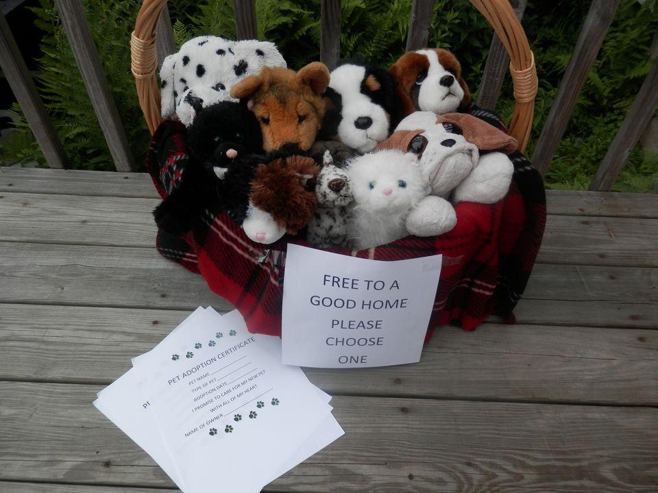 Stuffed Animal Adoption Game