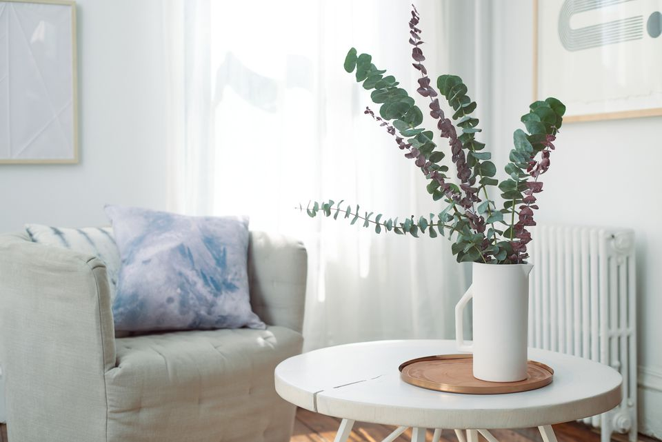 fresh and dried eucalyptus in a vase