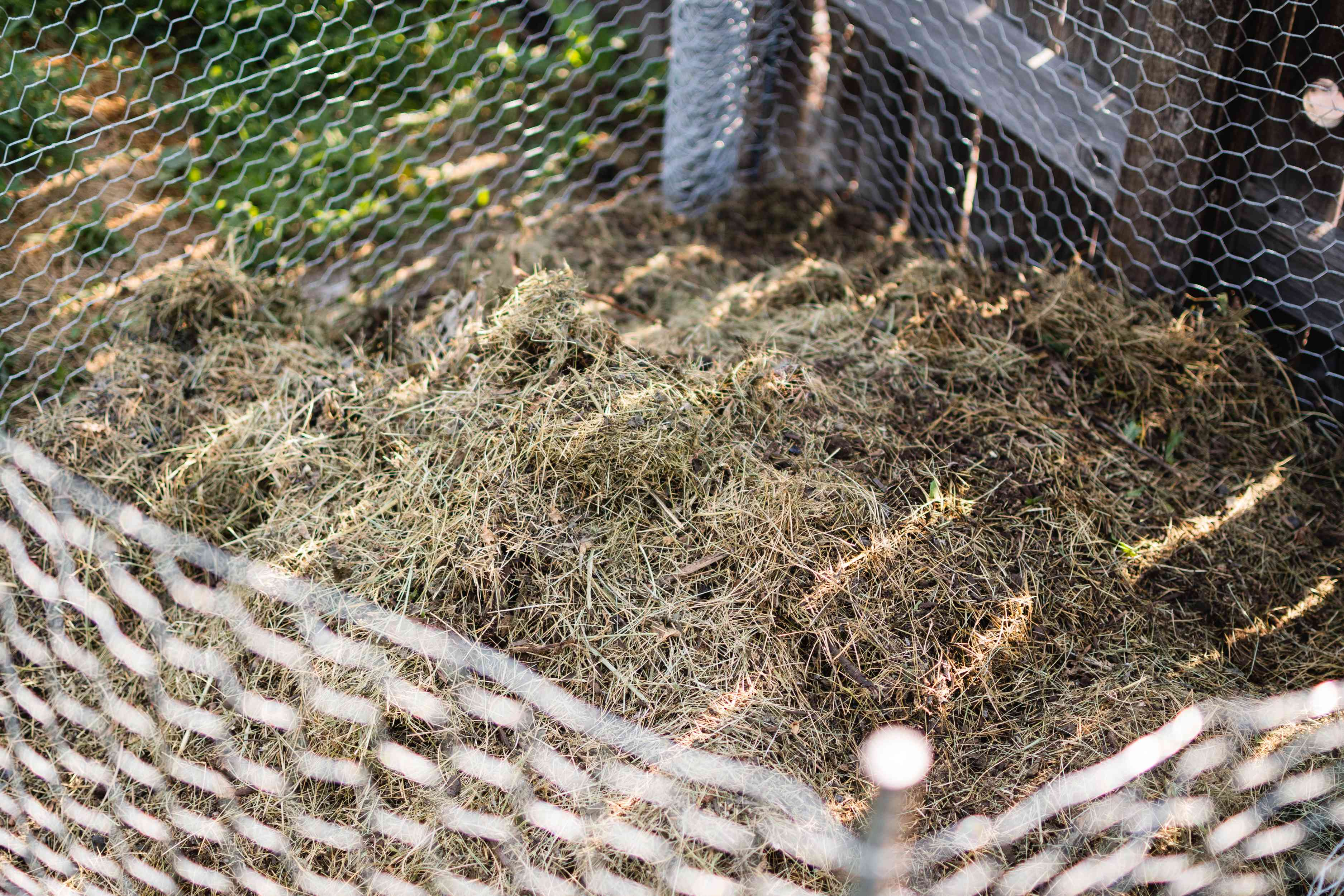 Organic waste and straw added to composting pile within wire fencing