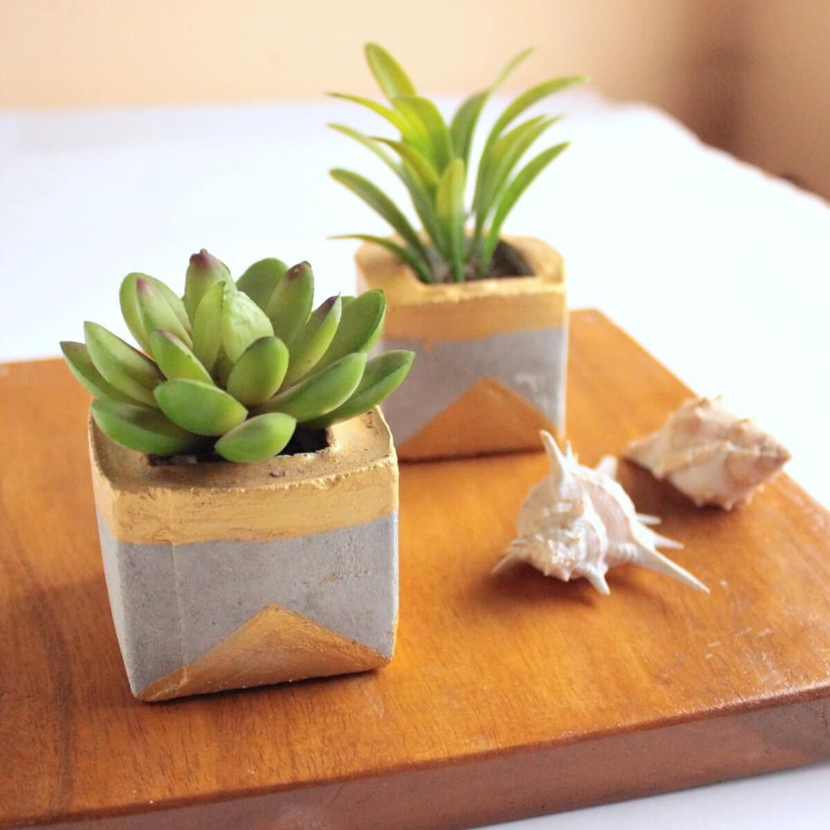 Two gold and concrete succulent planters