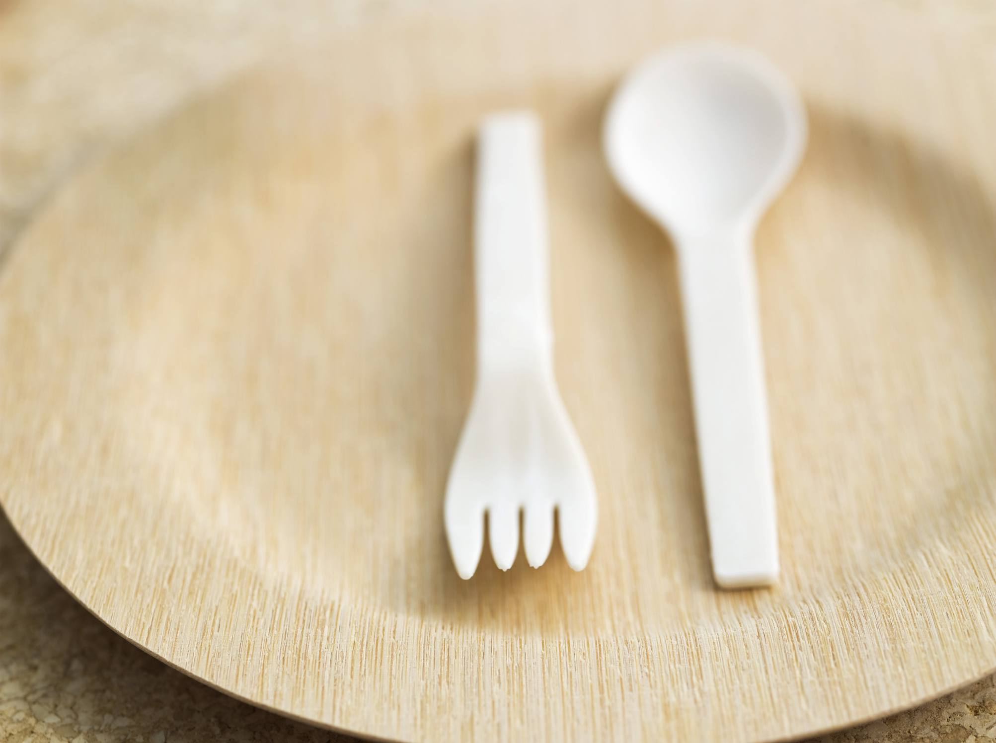 Close up of eco-friendly plate and utensils