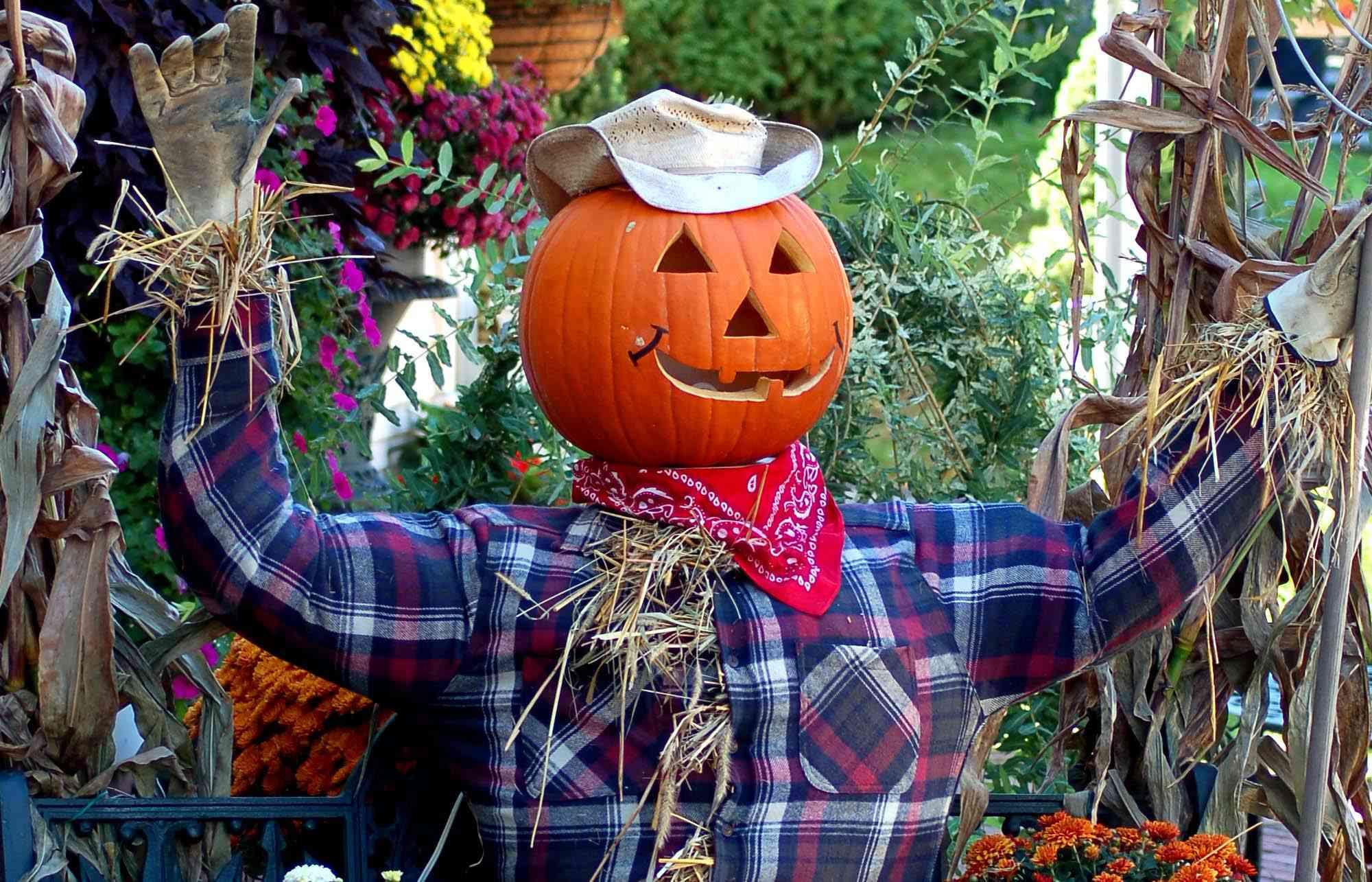 Scarecrow with a jack-o'-lantern head