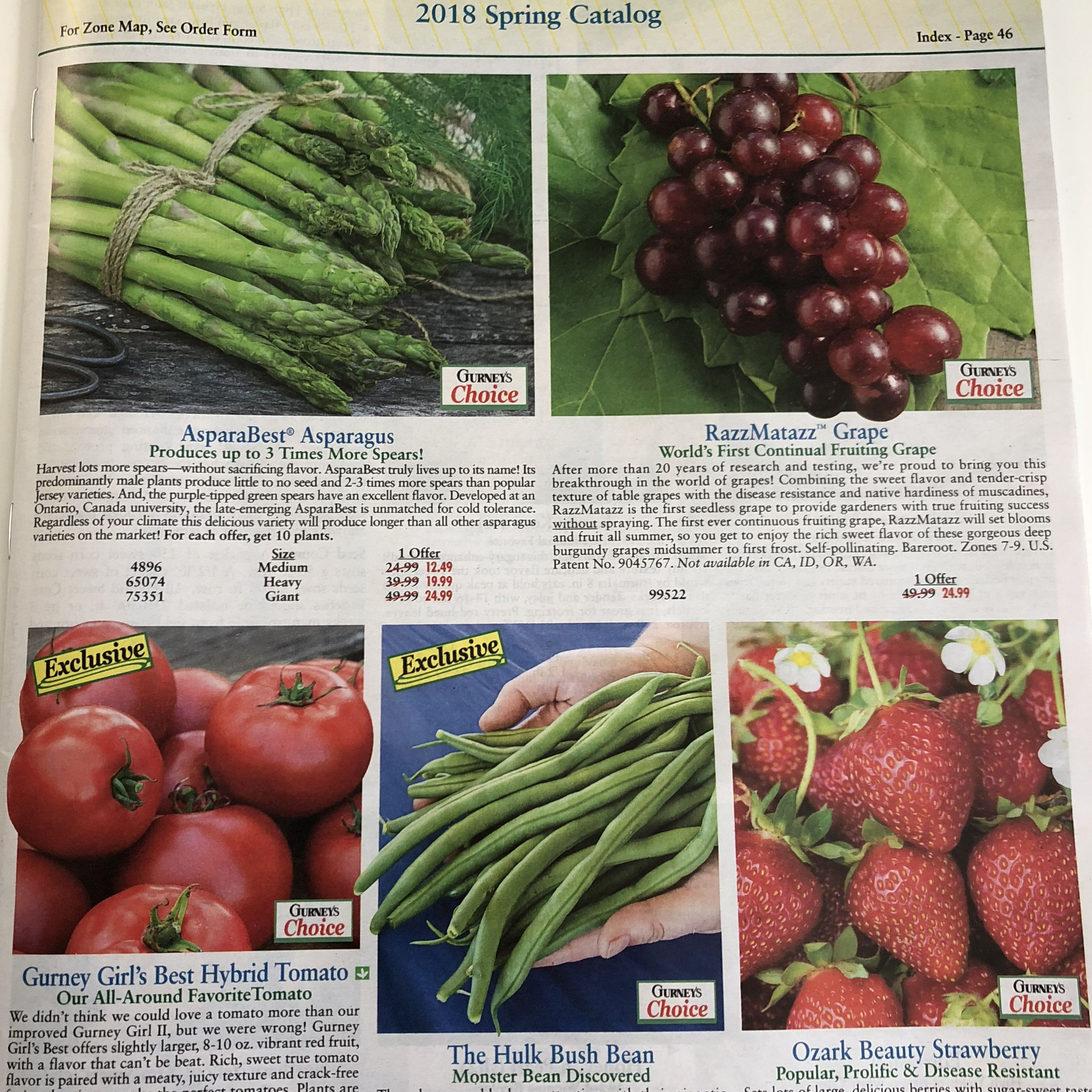 Gurney S Seed Nursery Co Plant And Catalog