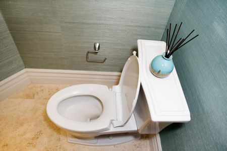 Tips for Choosing a New Toilet