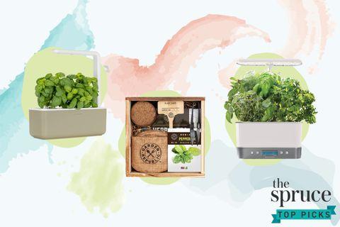 The 9 Best Herb Garden Kits Of 2021, Modern Sprout Indoor Herb Garden Kit