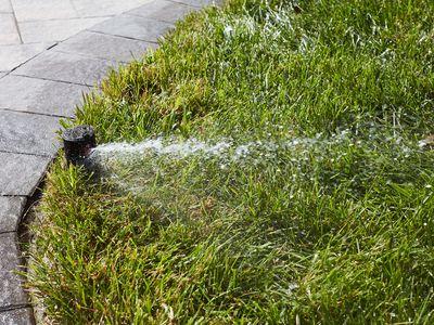Lawn sprinkler spraying water on grass next to gray pathway blocks