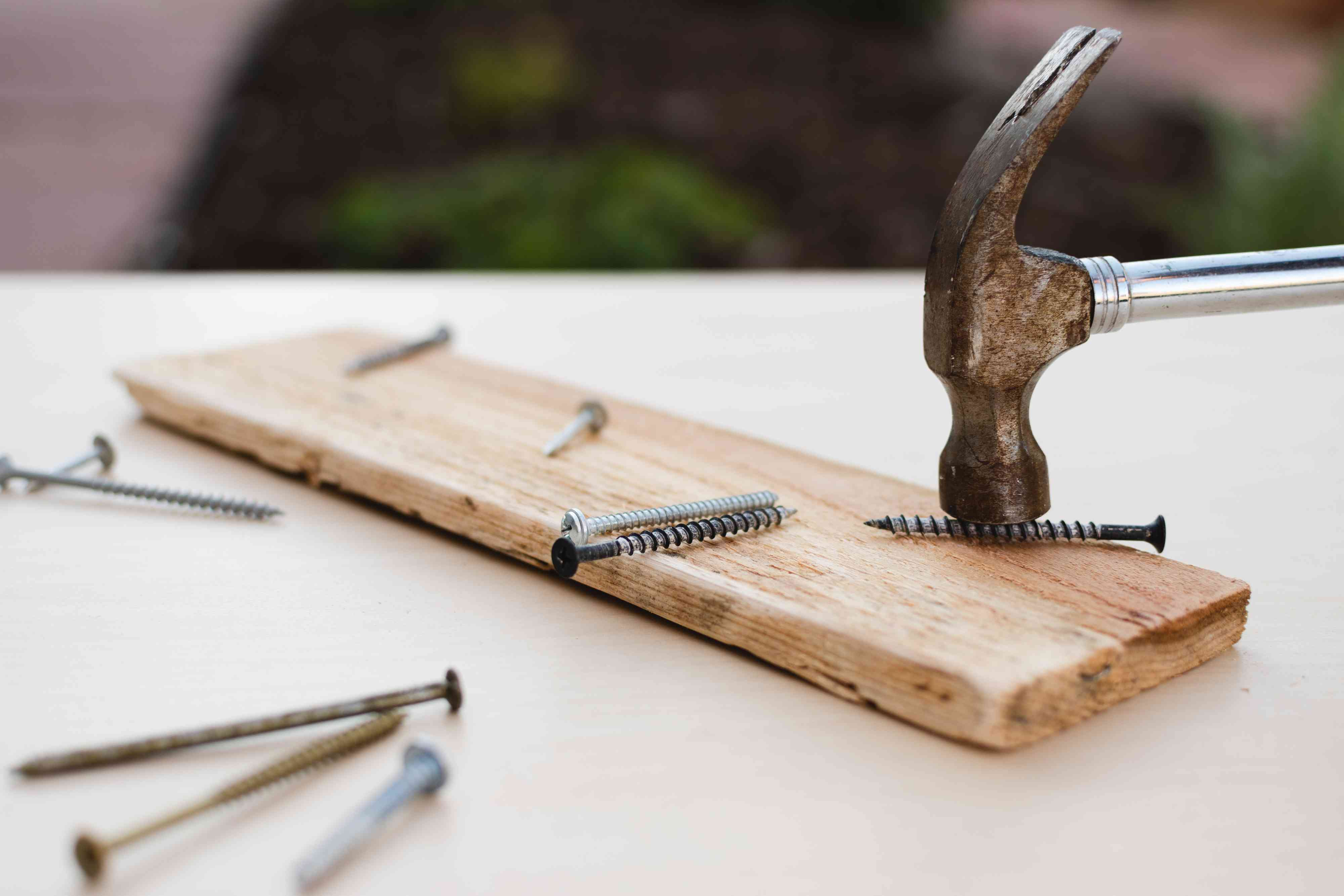 Screw tapped with hammer on wood plank to make insect activity look
