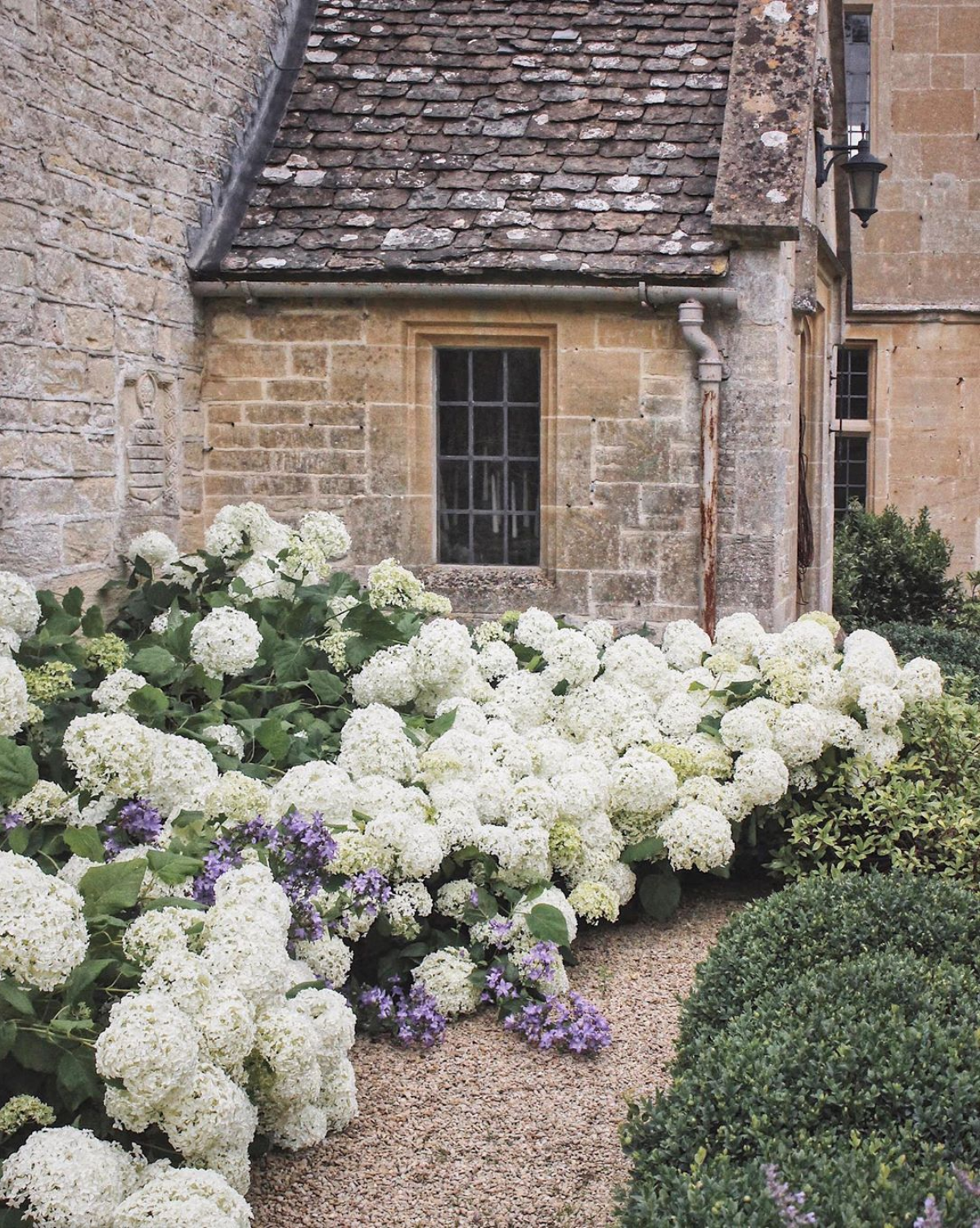 english cottage with flowers