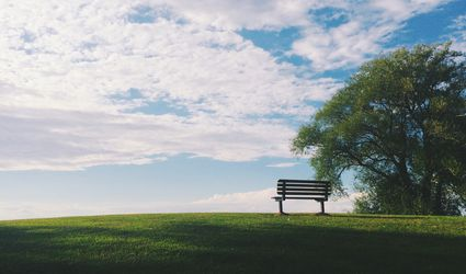 Single bench on a grassy hill