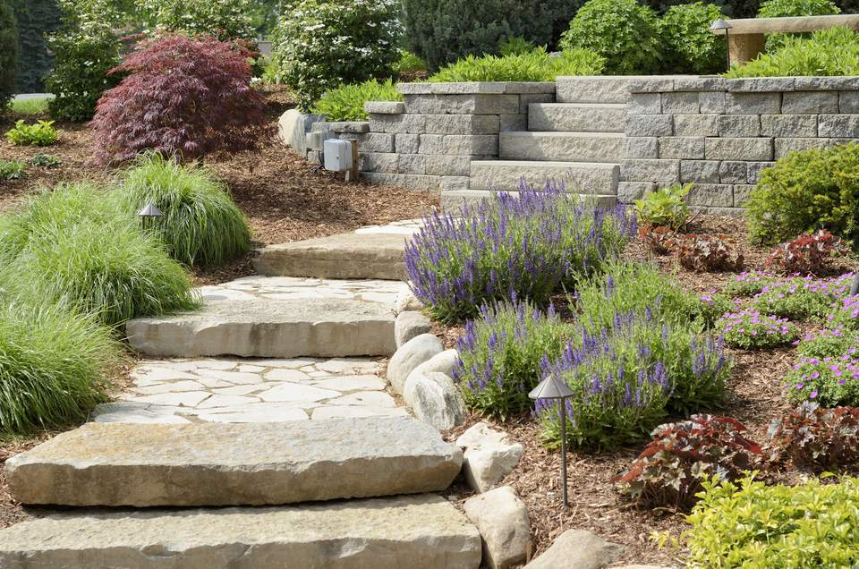 Stone steps going through beds of colorful plants.
