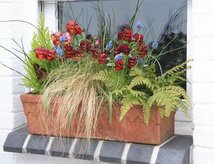 12 Ideas for Flowering Container Gardens
