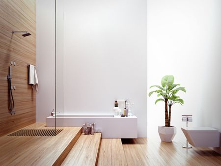 Bathroom Space Planning Guidelines And Practices Beauteous Bathroom Design Guidelines