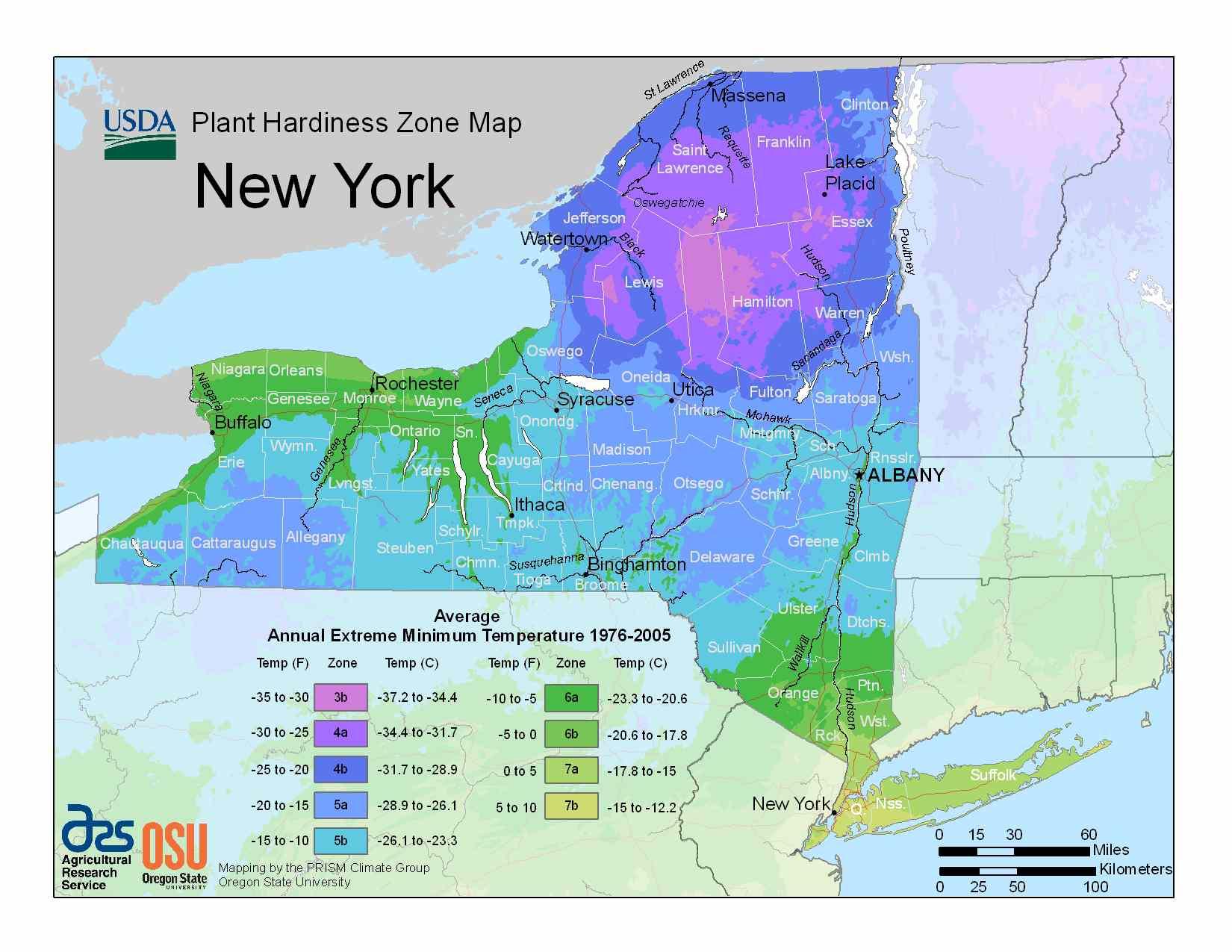 Photo of New York Hardiness Zones