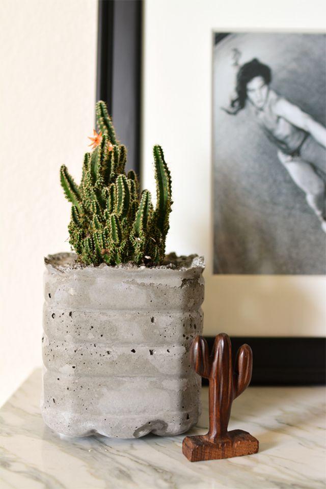 A concrete planter holding a cactus