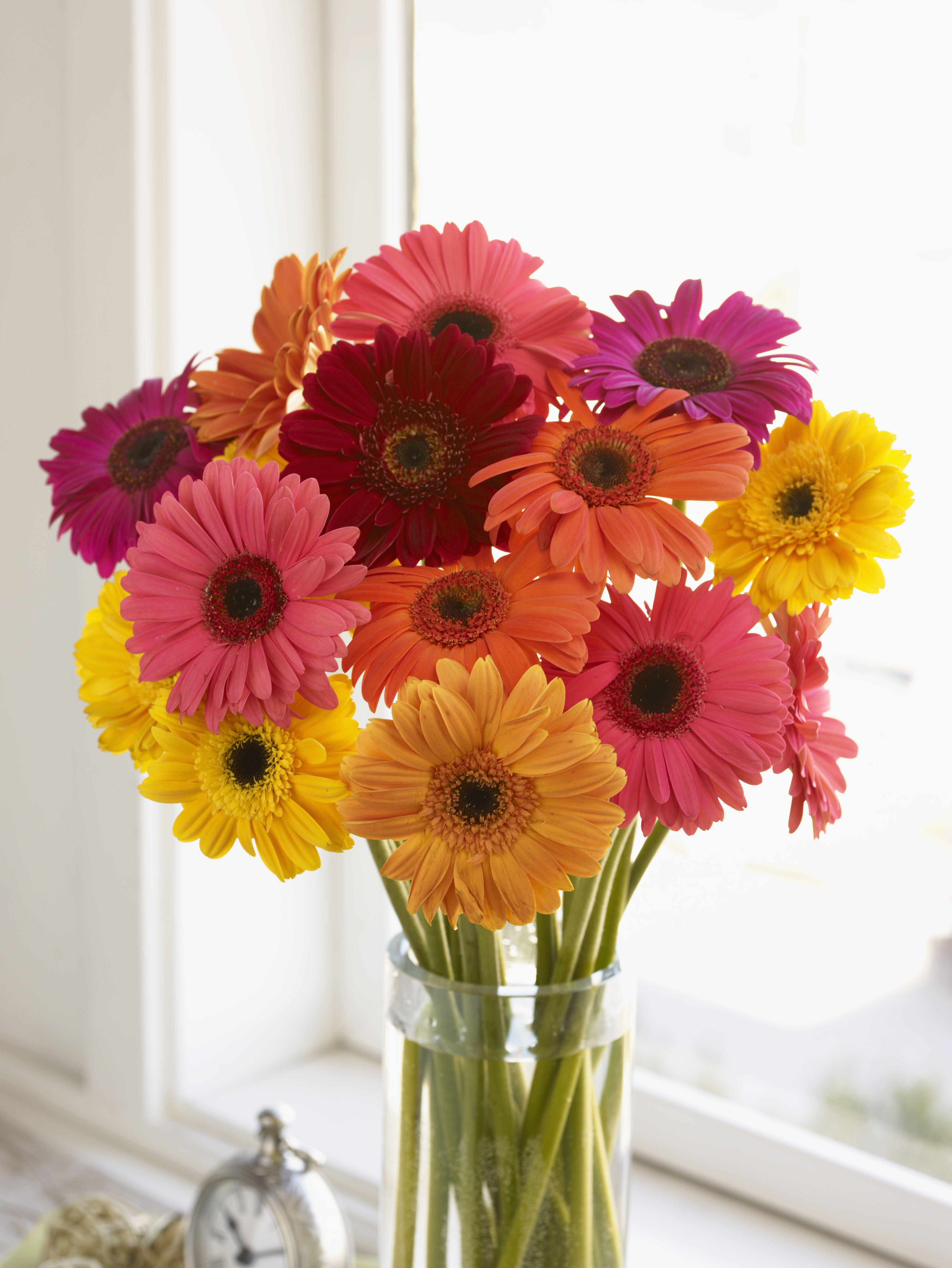 Birth Month Flower Gift Ideas