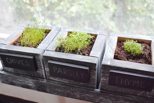 FATPLANTS Herb Garden Planter