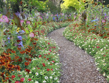 Perennial Cutting Garden Design – Cut Flower Garden Plan