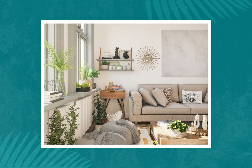 Plants in a living room with gray sofa, white walls, and a wood side table