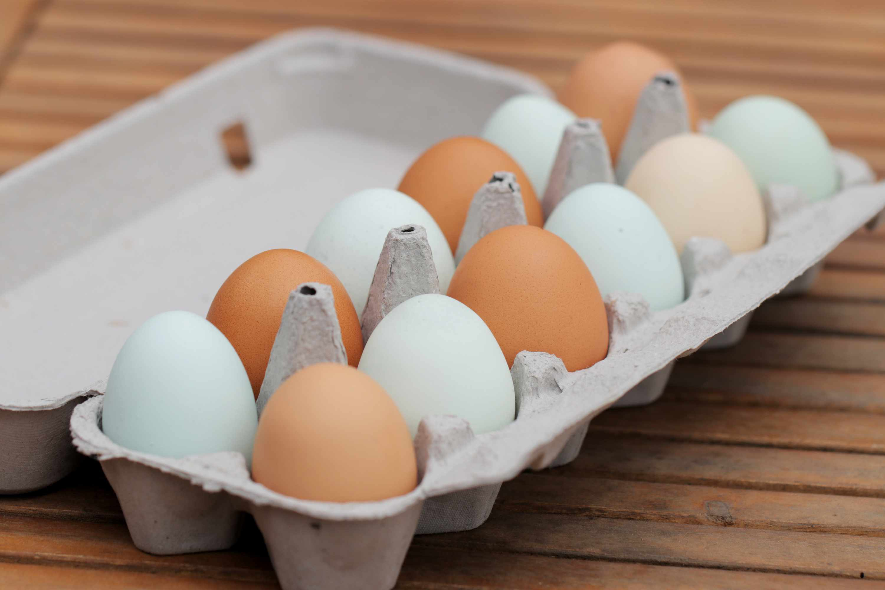 eggs stored in a carton